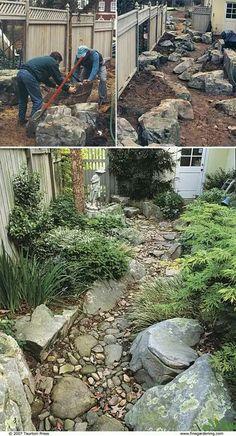 Create a dry creek garden