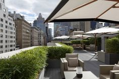 Rooftop Gardens & Terraces New York City - Interior Foliage Design Rooftop Design, Terrace Design, Garden Design, Rooftop Terrace, Terrace Garden, Courtyard Pool, Shade House, Pot Plante, Luxury Landscaping