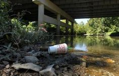 Cleanup of St. Louis-area creeks will take time, DNR official says Coldwater Creek, St Louis, Plants, Plant, Planets