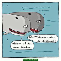 Nicht jeder versteht Wal Humor