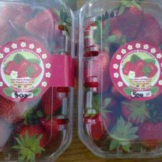 Căpșuni - Codrea Felicia Felicia, Website