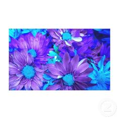 Purple N Turquoise Daisies Wrapped Canvas Print