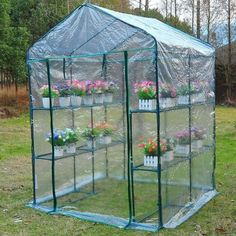 New-5x5x6-Portable-Steeple-Walk-In-Shelves-Plant-Flower-Gardening-Greenhouse