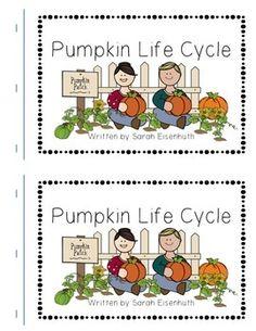 parts of a pumpkin diagram total teach week pinterest rh pinterest com diagram of pumpkin plant diagram of pumpkin flower