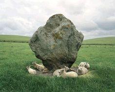 missmireille:    Sheep and Standing Stone,... - DE MARE LIBERUM