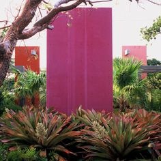 Casa Morada - Bright pop of colour - love it!