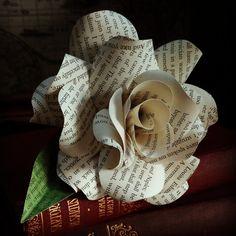 """Résultat de recherche d'images pour """"rose jane eyre"""""""