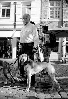 man, dog, street, Aachen, summer