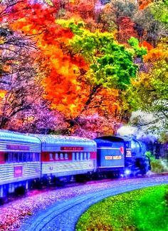 Fall Foliage Train