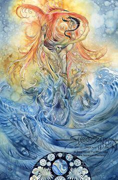 Zodiac - Scorpio - Painting by Stephanie Pui-Mun Law. Chart design by Michele Sayetta for Heaven and Earth Designs. Scorpio Art, Zodiac Art, Scorpio Zodiac, Astrology Zodiac, Zodiac Signs, Scorpio Quotes, Aquarius, Earth Design, Illustrations