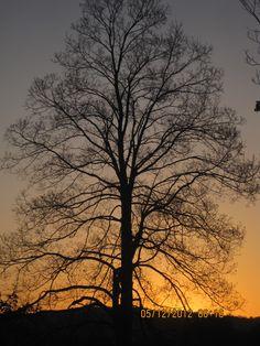 Sunrise at Floral Park Cemetery, Binghamton, NY
