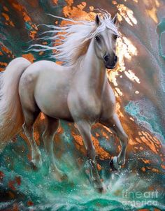 caballo-blanco-pintura-al-oleo