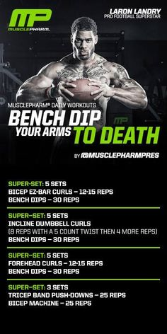 Bench dips your arms