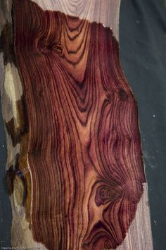 Interested In Learning Woodworking? Wood Logs, Wood Slab, Got Wood, Wood Patterns, Wood Texture, Wood Design, Wood Table, Wood Species, Types Of Wood