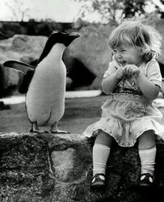 This needs to be my little girl and a penguin one day! soo adorable!