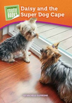 New! Bella and Rosie Advanced Chapter Book-Pioneer Valley Books - Daisy and the Super Dog Cape  www.pioneervalleybooks.com
