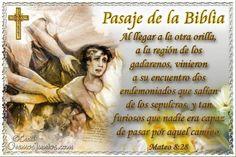 Vidas Santas: Santo Evangelio según san Mateo 8:28
