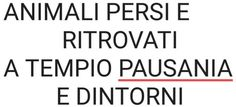 """Tempio+Pausania,+""""Animali+Persi+e+Ritrovati"""",+una+pagina+facebook+da+divulgare+e+far+conoscere."""
