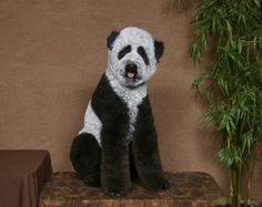 I am SOOO totally going to have to get Cheetos groomed like a  Panda!!  OH MY!!  I love it!!!