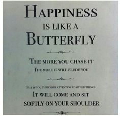 Happiness is like a butterfly @Katie Britney a quote about butterflies for you!
