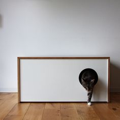 modern cat litter box