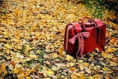 50 Inspirações pro Outono Que Acaba de Chegar...