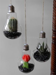 3  -  Mid Century Style LIGHT BULB Hanging Planters - Terrariums