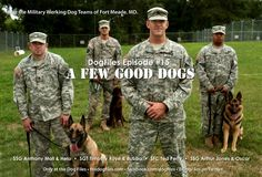 Wonderful Dogs!!!!! God Bless them!