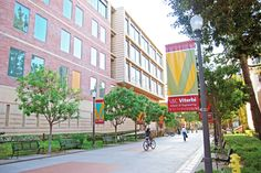 university of southern california on pinterest