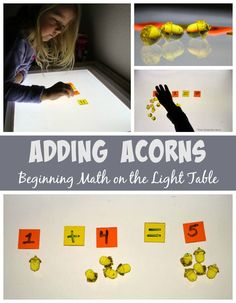 Counting & Adding Acrylic Fall Acorns on the Light Table! A simple preschool math game!