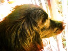 profil..:)