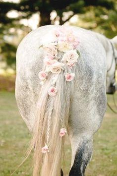 Lovely braid!