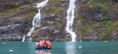 Australis: Cruise On A First Class Small Ship - Patagonia Cruises Cap Horn, Les Fjords, Le Cap, Round Trip, Argentine, South America, Cruise, Wildlife, Tours