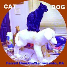 Cat/Dog. Farrell Hamann Fine Art. #Sacramento, CA. No. 19 in critter collection