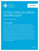 Putting a Price on Carbon: Ensuring Equity | World Resources Institute