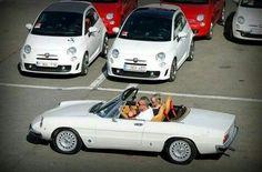 Alfa Romeo Alfa Romeo Spider, Passion, Cars, Vehicles, Autos, Car, Car, Automobile, Vehicle