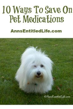 10 Ways To Save On Pet Medications; Medications for preventative care and chronic pet diseases can certainly add up, putting a real dent in your wallet. Here are some tips on how to save on pet medications. http://www.annsentitledlife.com/library-reading/10-ways-to-save-on-pet-medications/