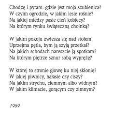 """""""Chodzę i pytam""""  Rafał Wojaczek"""