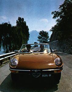 Alfa Romeo Spider - 1981