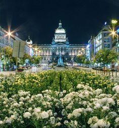 Saint Winceslas Square, Prague