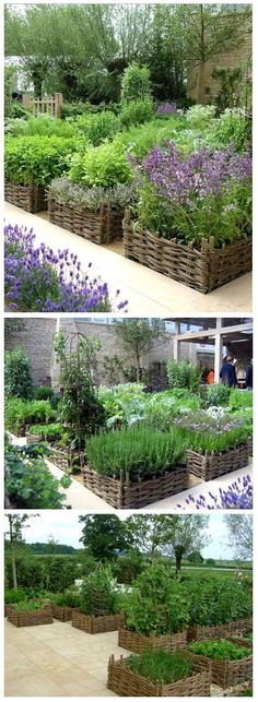 Raised beds with beautiful basket-weave borders | World In Green by Hairstyle Tutorials