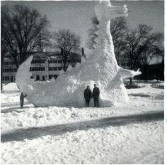 Winter Dinasour