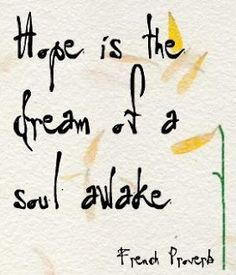 Hope is the dream of a soul awake. Elemeno P