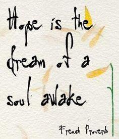 Hope is the dream of a soul awake. Elemeno P
