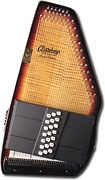 learn to play the autoharp? sounds like quite a chore considering i can't manage to figure out a guitar
