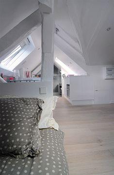Attic Apartment in Paris