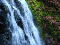 Triple Falls / Horsetail Falls. Weeping walls, 19,000 Steps Wooohoo!