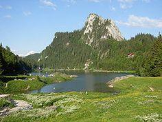 Swiss Switzerland, Canton, Golf Courses, Altitude, Water, Outdoor, Switzerland, Mountain, Places