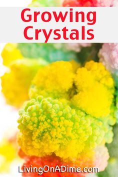 Growing Crystals Recipe Fun Kids Science Experiment is part of DIY Kids Crafts Science - This growing crystals recipe makes a fun science experiment for kids! It's an easy craft and kids love watching the crystals grow a little more each day! Cool Science Experiments, Science For Kids, Science Art, Science Projects, Easy Meals For Kids, Kids Meals, Stem Activities, Activities For Kids, Growing Crystals