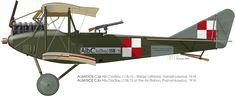 Albatros C. I.Ia Unit: unknown Serial: 118/15 Air Station, Poznan-Lawica, 1918.